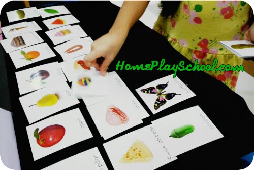 Matching The Very Hungry Caterpillar nomenclature cards